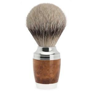 Shavebrush silver-tip thuya wo